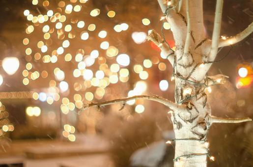 Christmas illumination 71