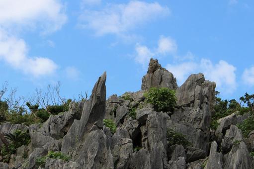 오오이시 林山