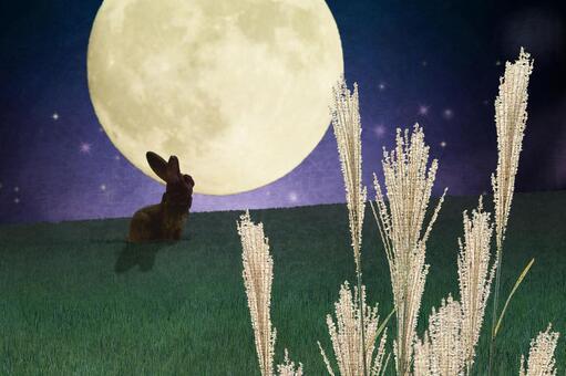 Moon viewing night and Susuki