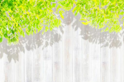 Leaves, sunbeams and wooden boards_background material