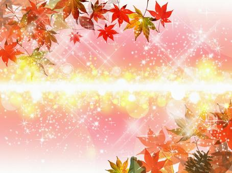 Autumn leaves background 16082804