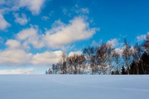 Snowy field / snowy landscape