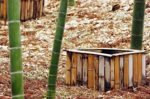 A meaningful well in bamboo forest