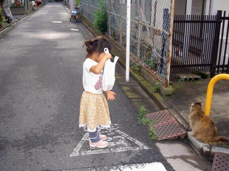 A girl playing with a stray cat