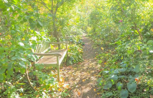 英式花園在初夏的長椅上看風景