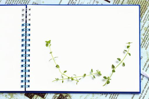 Green Sketch 1