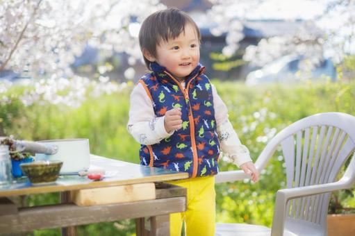 一個2歲的孩子在櫻花的背景下微笑