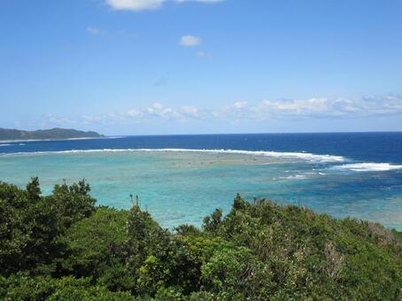 Amami Oshima Sea