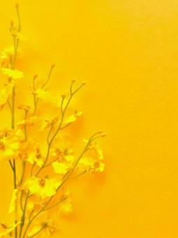 Bright yellow postcard