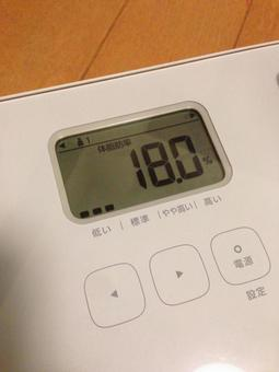 Weight scale and body fat percentage