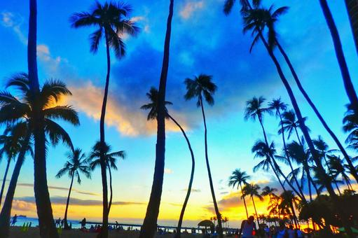 A view with plenty of tropical mood in Hawaii