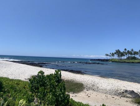 Hawaii Island beach