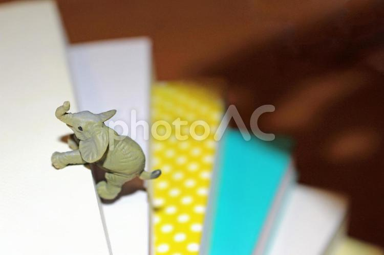 困難を乗り越えるゾウの写真