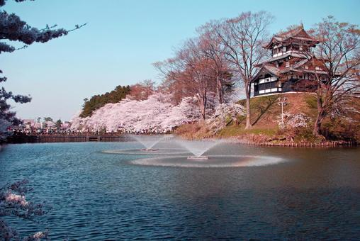 View of cherry blossoms from Takada castle