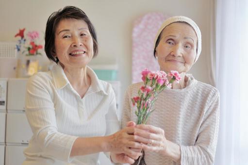 Elderly care carnation