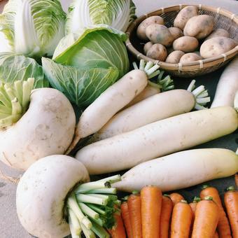 Vegetable 02