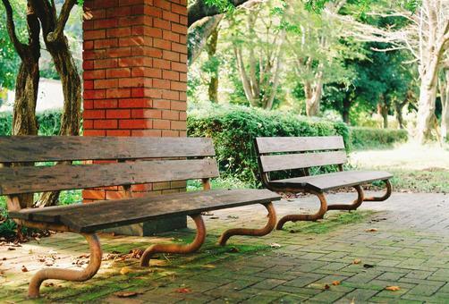 Sunbeams bench