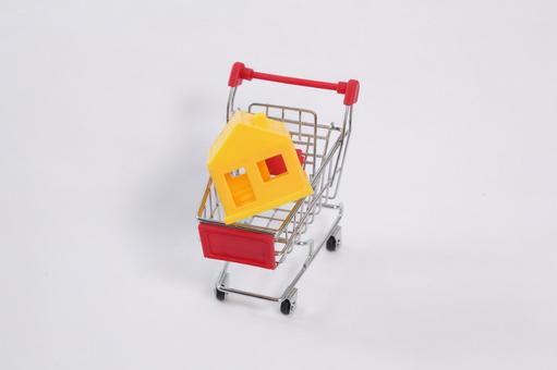 Shopping cart 21