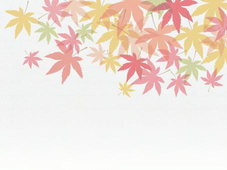 Autumn leaves wallpaper texture background 160829