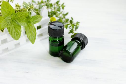 Mini Herb Garden and Essential Oil