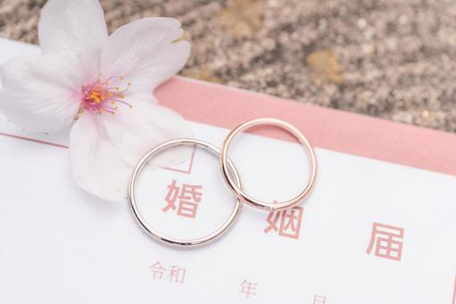 Marriage registration, wedding ring and cherry blossoms