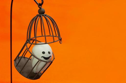 鳥籠Obake