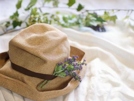 Summer journey with Straw Hat