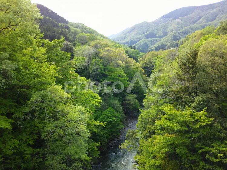 山と渓谷 道志村の写真