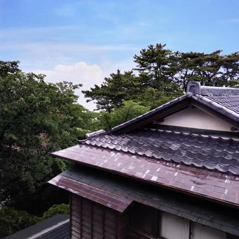 Japanese house after the rain