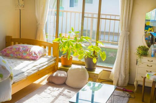Ladies living alone room Sunny day