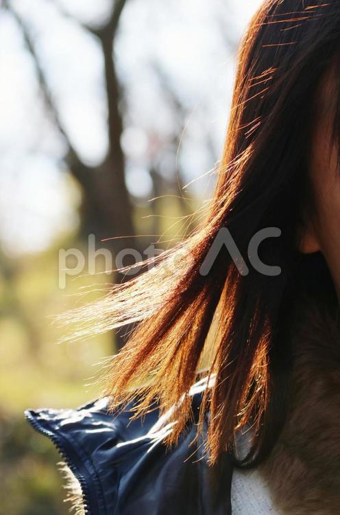 女性 髪の毛の写真