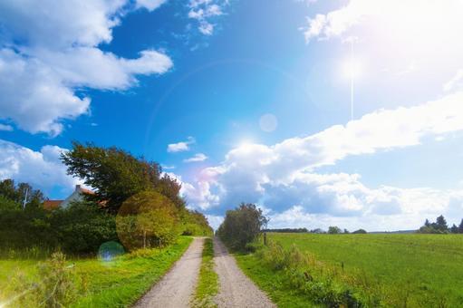 Danish countryside view