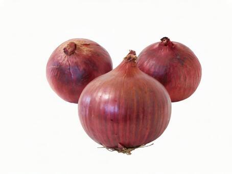 Purple onion 1 (with cutout path)
