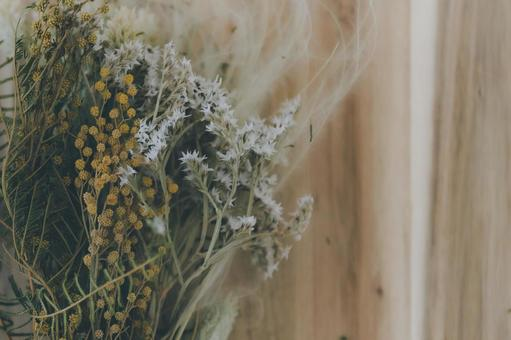 Dried mimosa flowers
