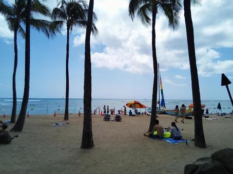 하와이의 와이키키 해변에서