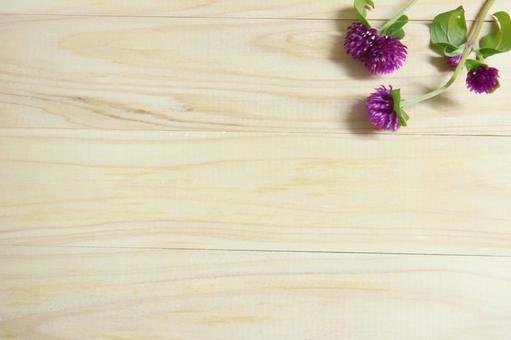 Sennichiko flower background grain texture