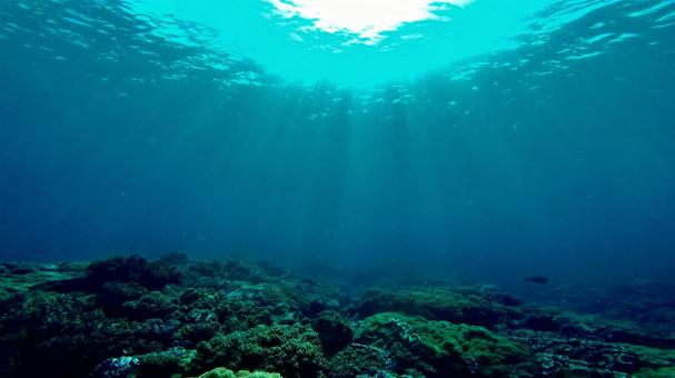 Okinawa sandy sea