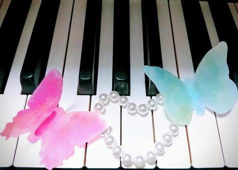 피아노 건반과 나비