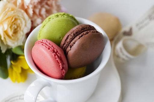 Colorful Macaron _ 1