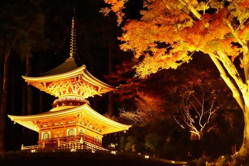 Illumination of the temple and autumn leaves