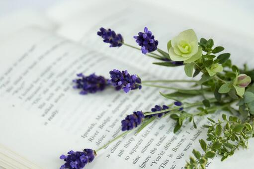 Opened books and bouquet of herbs_2