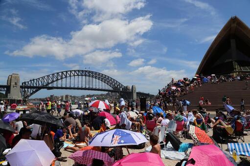 悉尼海港大桥歌剧院