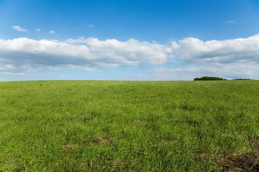 Grassland · Takahara 3