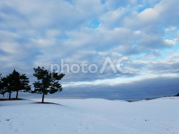 雪の鳥取砂丘の写真