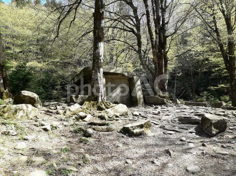 「遺跡、巨石」森の中の大昔のドルメンの写真
