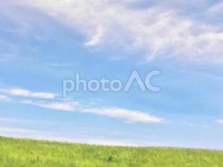 草原の写真