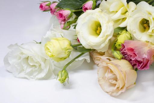 Bouquet _2