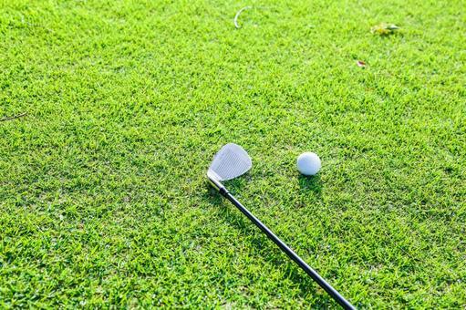 Grass Club and Golf Ball 8