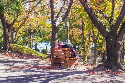 An old couple resting in the shade