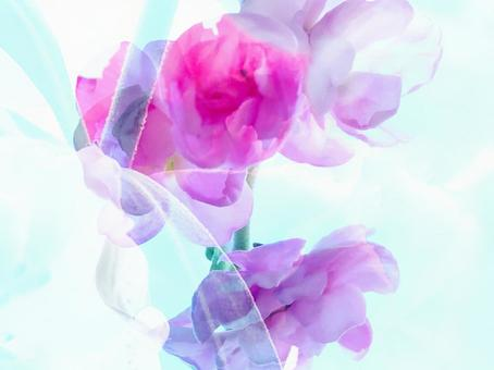 Pink flower light blue veil fantastic background
